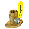 Webstone Flange Isolator Valves